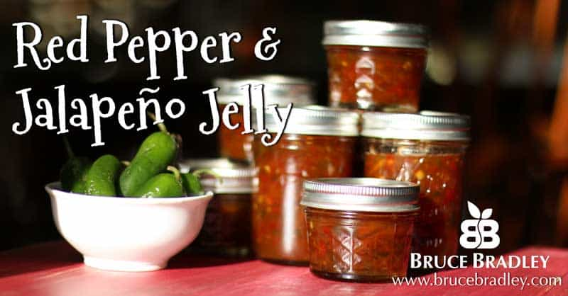 Bruce Bradley's Red Pepper Jalapeño Jelly recipe uses no sugar and makes a wonderful gift!