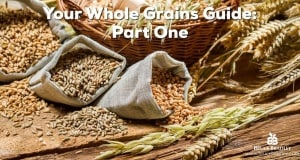Part One of Bruce Bradley's Understanding Whole Grains Guide